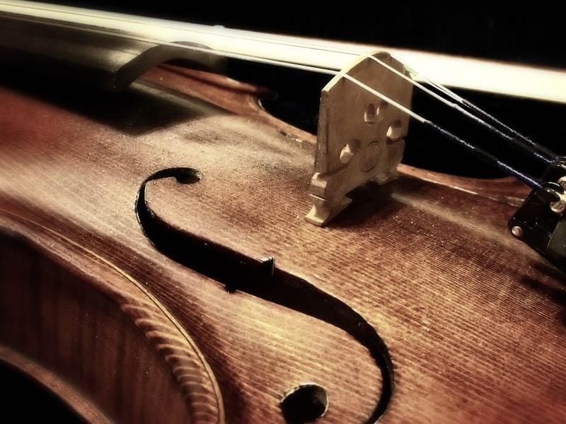corso-violino-scuola-musica-rogi-roma-nord-trionfale